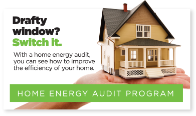 Home Energy Audit Program